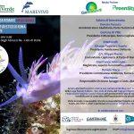 Mediterraneo da remare 2019 #PlasticFree: tappa al Porto Turistico di Roma