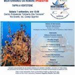 Mediterraneo da remare 2019 #PlasticFree: tappa a Ventotene
