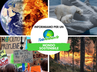 Teleambiente informiamo per un mondo sostenibile